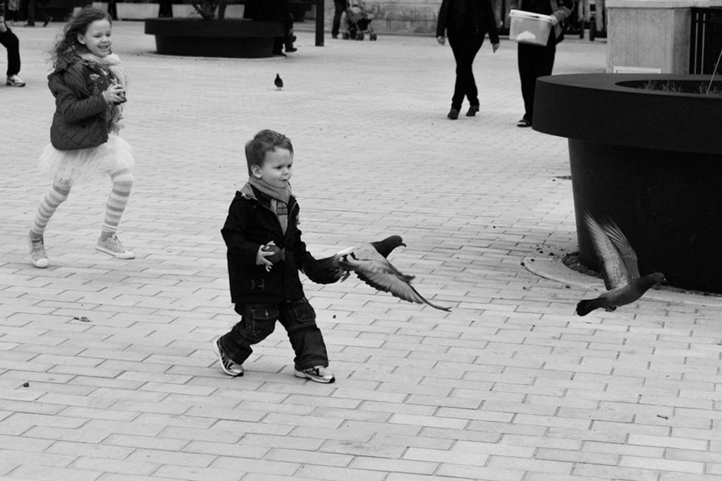 Enfants jouants avec les pigeons