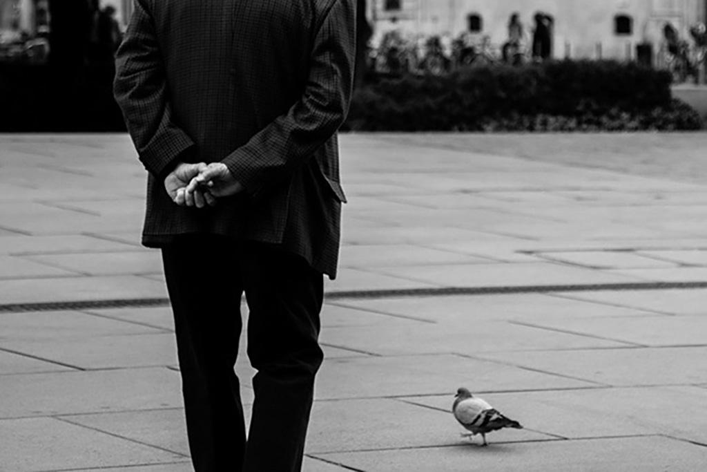 Vieillard au pigeon